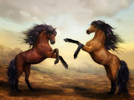hest3